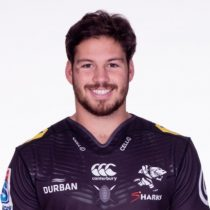 Marius Louw rugby player