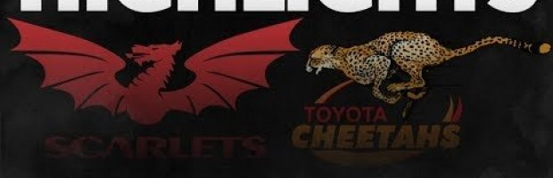PRO14 Round 5: Scarlets v Cheetahs Highlights